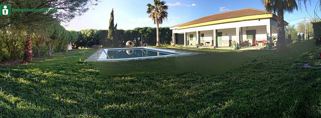 Foto - Casa en alquiler en Dos Hermanas - 316118691