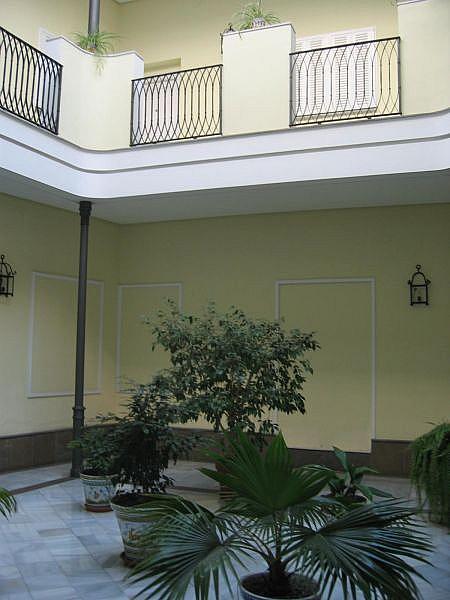 Foto - Apartamento en alquiler en Casco Antiguo en Sevilla - 325999967