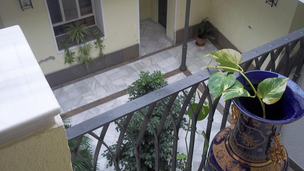 Foto - Apartamento en alquiler en Casco Antiguo en Sevilla - 325999997