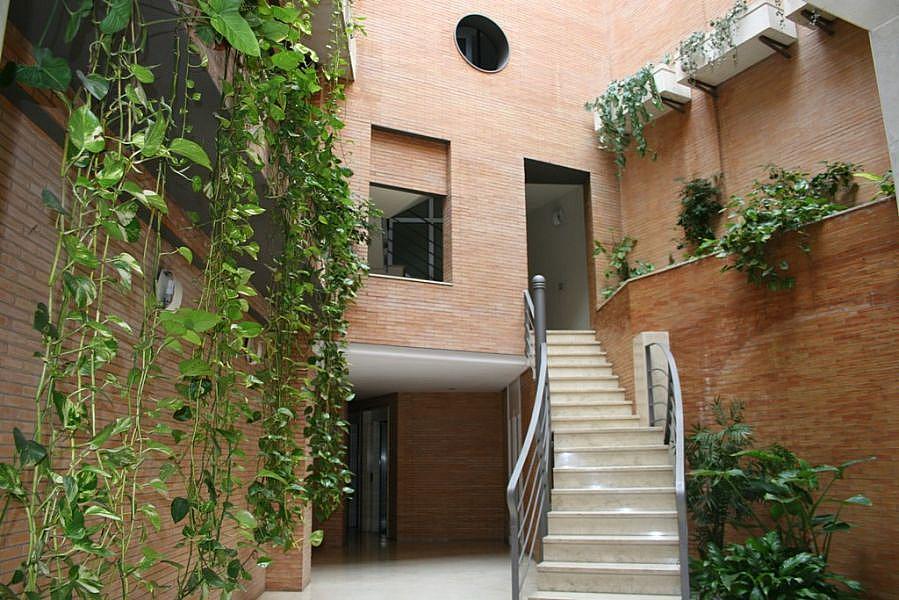 Foto - Piso en alquiler en Nervión en Sevilla - 328831343