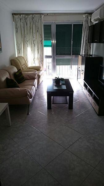 Foto - Piso en alquiler en Montequinto en Dos Hermanas - 333768792