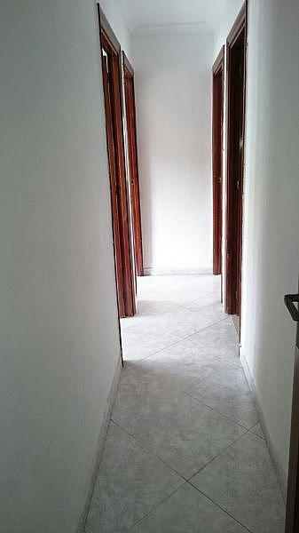 Foto - Piso en alquiler en Montequinto en Dos Hermanas - 333768819