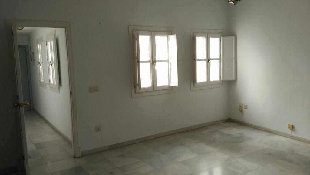 Foto - Apartamento en alquiler en San Vicente en Sevilla - 348078974