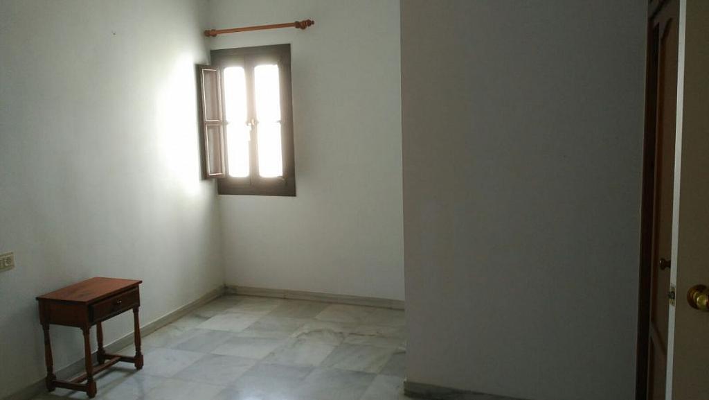 Foto - Apartamento en alquiler en San Vicente en Sevilla - 348078983