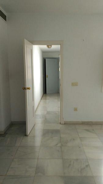 Foto - Apartamento en alquiler en San Vicente en Sevilla - 348078986