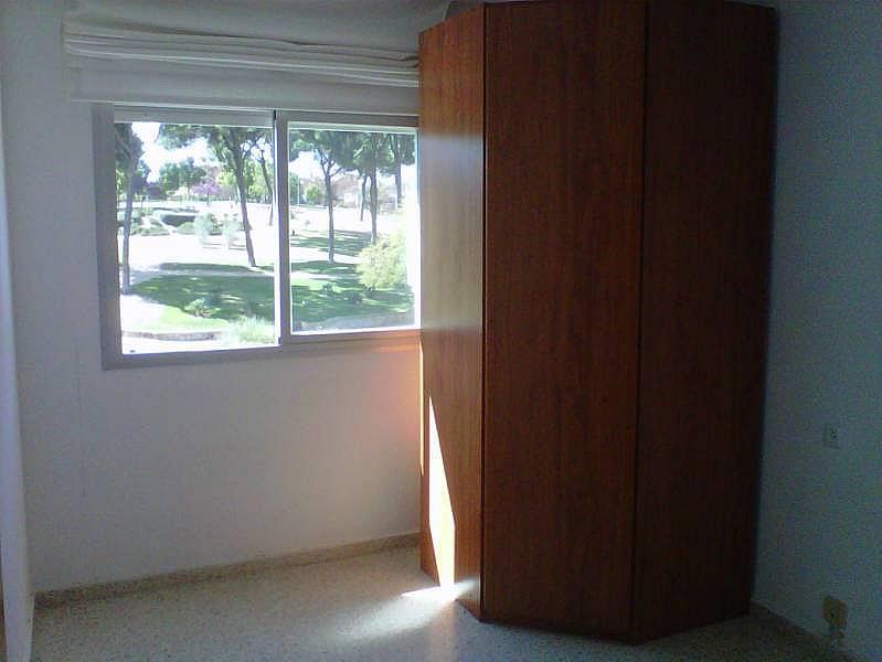 Foto - Piso en alquiler en Montequinto en Dos Hermanas - 184827869