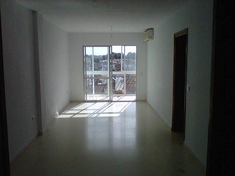 Foto - Piso en alquiler en Montequinto en Dos Hermanas - 184828868
