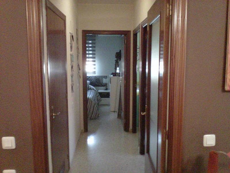 Foto - Piso en alquiler en Montequinto en Dos Hermanas - 241023468