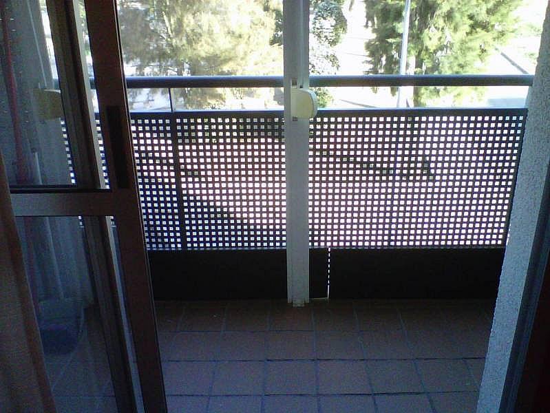Foto - Piso en alquiler en Montequinto en Dos Hermanas - 241023471