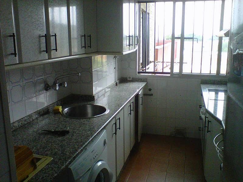Foto - Piso en alquiler en Montequinto en Dos Hermanas - 184830269