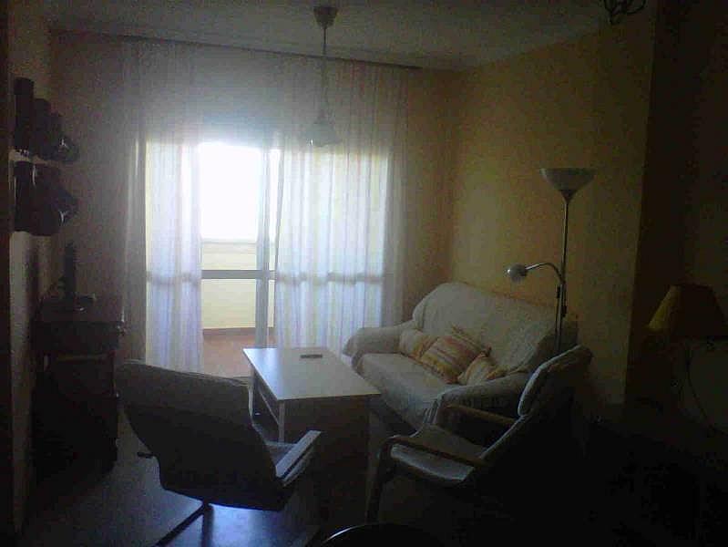 Foto - Piso en alquiler en Montequinto en Dos Hermanas - 184830383