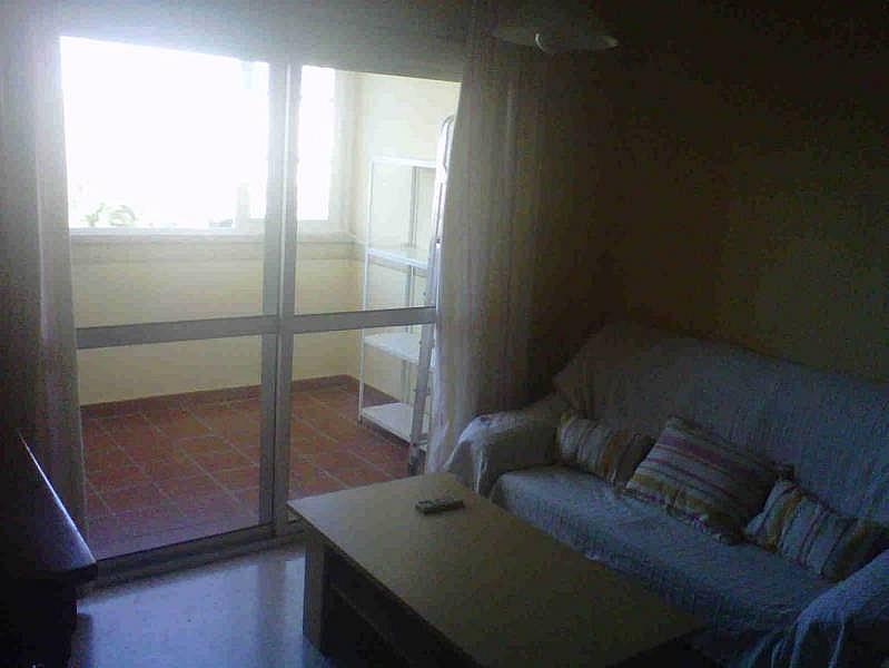 Foto - Piso en alquiler en Montequinto en Dos Hermanas - 184830386