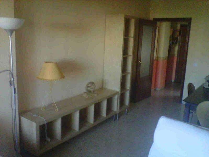 Foto - Piso en alquiler en Montequinto en Dos Hermanas - 184830392