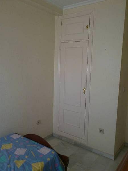 Foto - Piso en alquiler en Montequinto en Dos Hermanas - 184830491