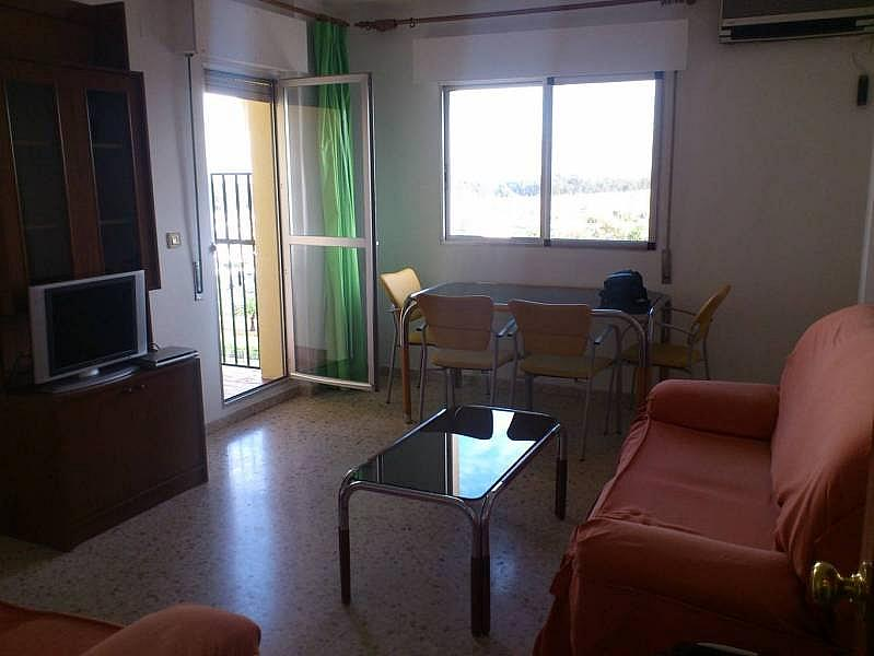 Foto - Piso en alquiler en Montequinto en Dos Hermanas - 184830602