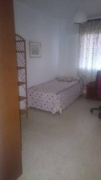 Foto - Piso en alquiler en Distrito Sur en Sevilla - 228698710
