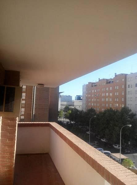 Foto - Piso en alquiler en San Pablo en Sevilla - 239025323