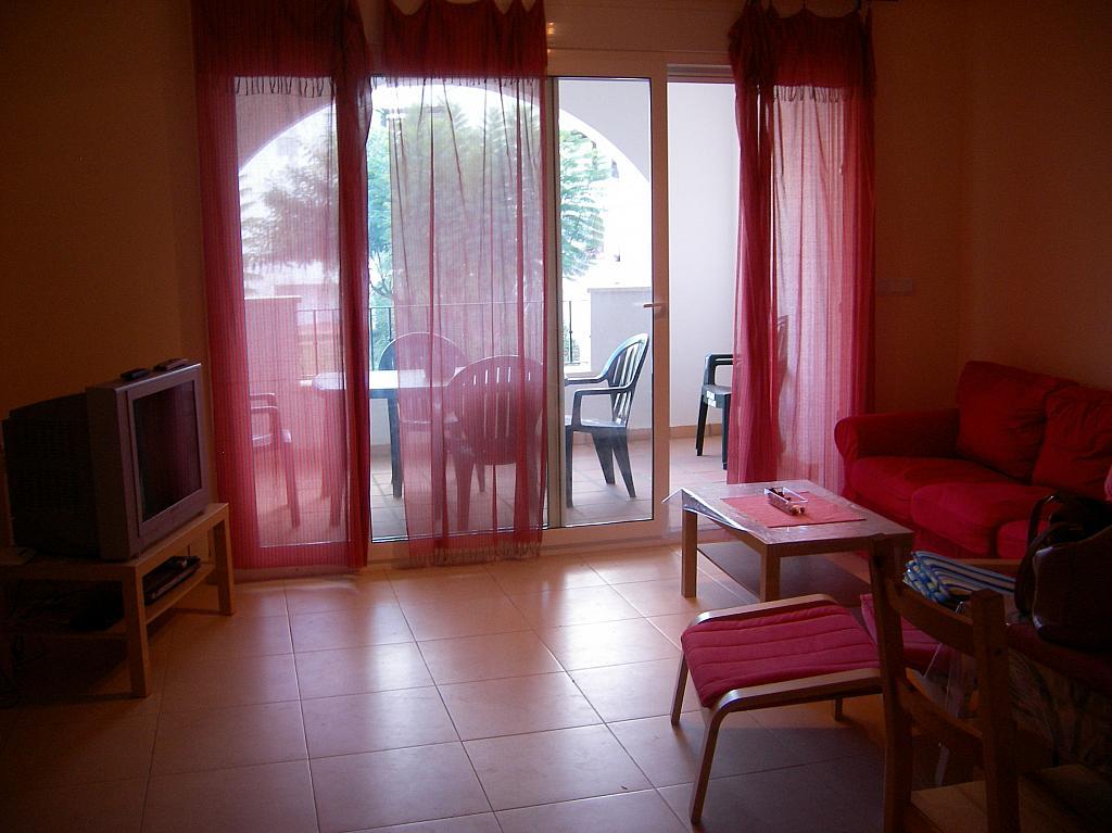 Salón - Piso en alquiler en Torre Pacheco - 256046520