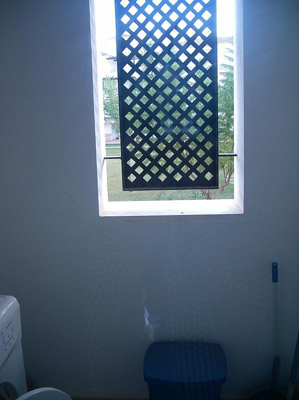 Lavadero - Piso en alquiler en Torre Pacheco - 256047635