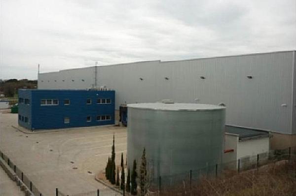 Nave Industrial en Hostalric de 6349m2 - Nave industrial en alquiler en Hostalric - 331870766