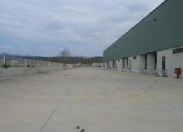 Nave Industrial en Hostalric de 6349m2 - Nave industrial en alquiler en Hostalric - 331870778