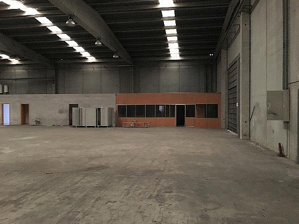 Nave Industrial en Sant Feliu de Buixalleu de 7.200m2 - Nave industrial en alquiler en Sant Feliu de Buixalleu - 331872101