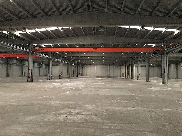 Nave Industrial en Sant Feliu de Buixalleu de 7.200m2 - Nave industrial en alquiler en Sant Feliu de Buixalleu - 331872113