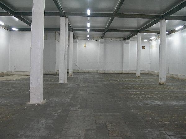 Nave Industrial en Sant Quirze del Vallès de 1006m2 - Nave industrial en alquiler en Sant Quirze del Vallès - 334449446