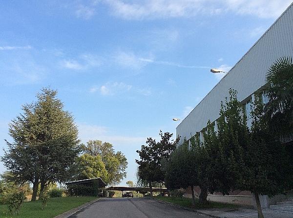Nave Industrial en Sant Quirze del Vallès de 1.700m2 - Nave industrial en alquiler en Sant Quirze del Vallès - 334449458