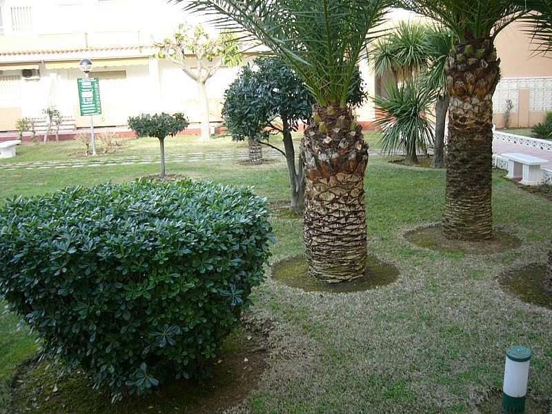 Casa adosada en alquiler en calle Camp de Morvedre, Playa de Gandia en Gandia - 126633730