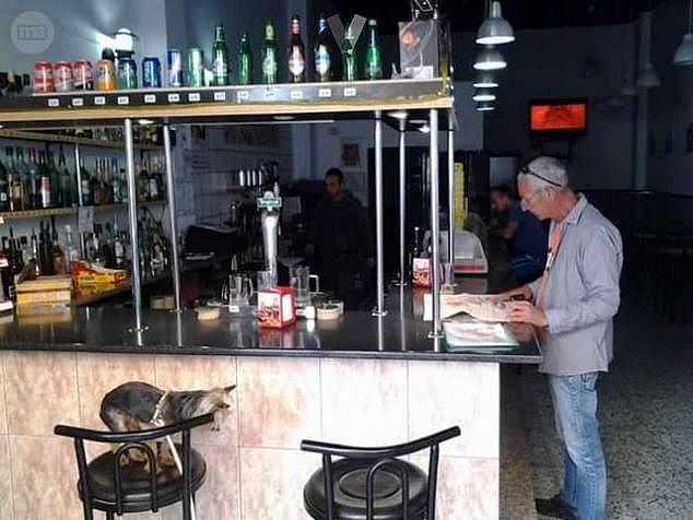 Bar en alquiler en calle Vecindario, Vecindario - 265536866