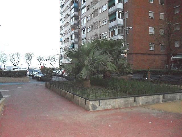 Local comercial en alquiler en calle Dolçamara, Sant Ildefons en Cornellà de Llobregat - 139720550