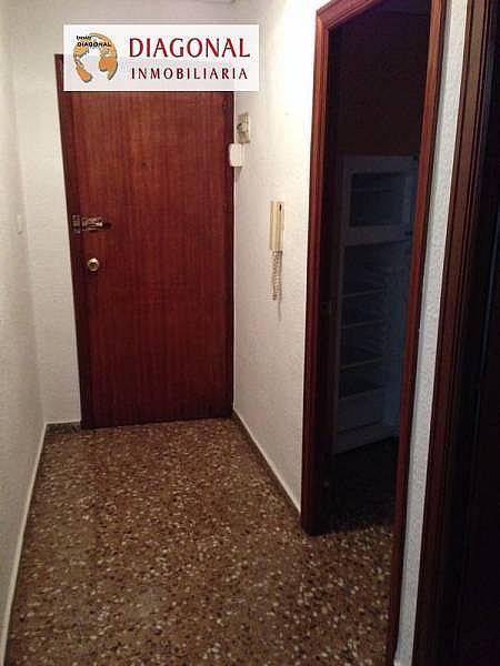 Foto - Estudio en alquiler en plaza Madrid, El Toscar en Elche/Elx - 336440035