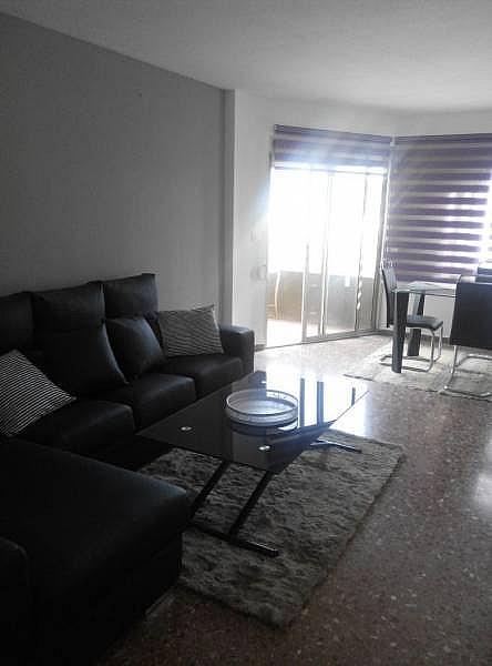 Foto - Piso en alquiler en Campanar en Valencia - 249883554