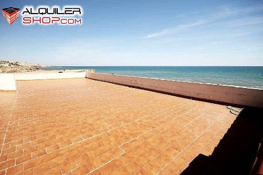 Foto - Casa en alquiler en Playa de los Locos en Torrevieja - 272614934