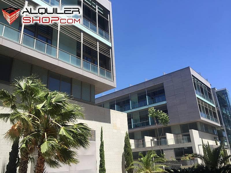 Foto - Loft en alquiler en Tres Forques en Valencia - 292315492