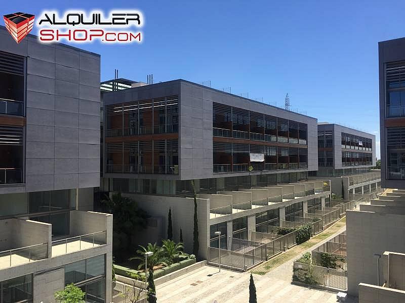 Foto - Loft en alquiler en Tres Forques en Valencia - 292315549