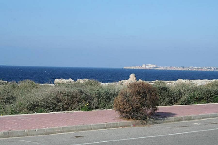 Foto - Bajo en alquiler en Ciutadella de Menorca - 187142251