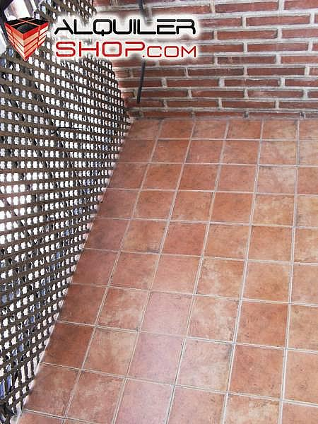 Foto - Piso en alquiler en Les Tendetes en Valencia - 226077183