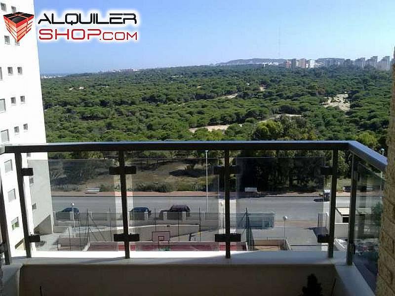 Foto - Apartamento en alquiler en Guardamar del Segura - 228629298