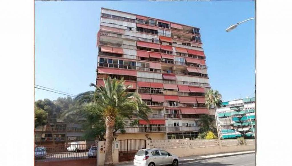 Foto - Apartamento en venta en Albufereta en Alicante/Alacant - 233443870