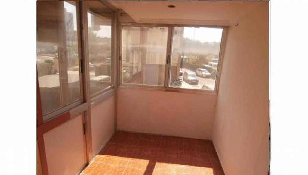 Foto - Apartamento en venta en Albufereta en Alicante/Alacant - 233443873