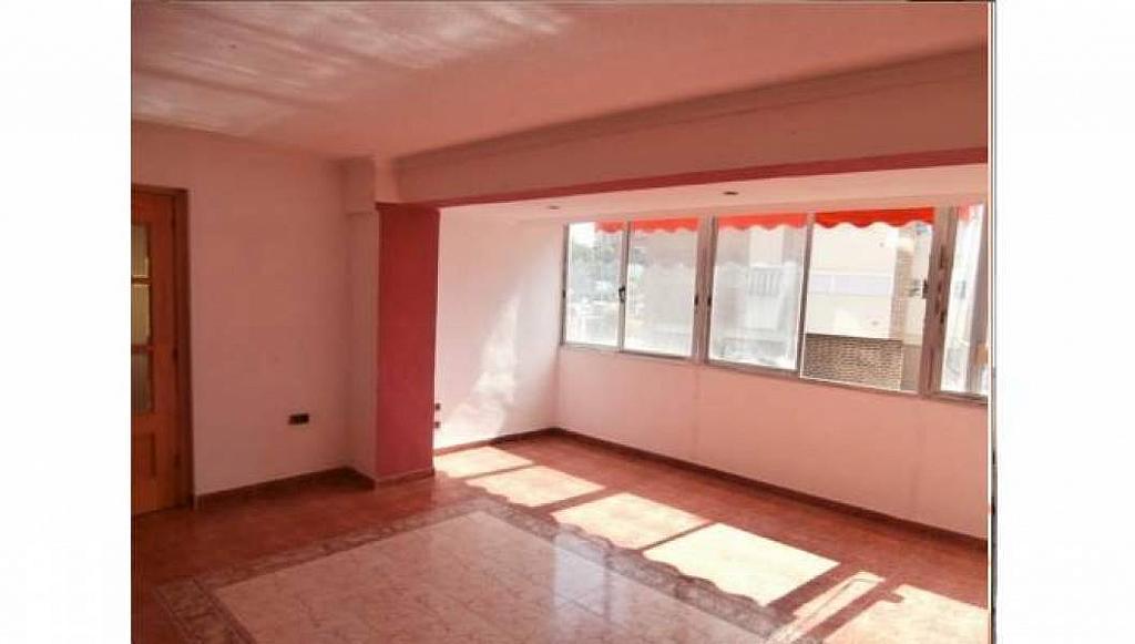 Foto - Apartamento en venta en Albufereta en Alicante/Alacant - 233443882