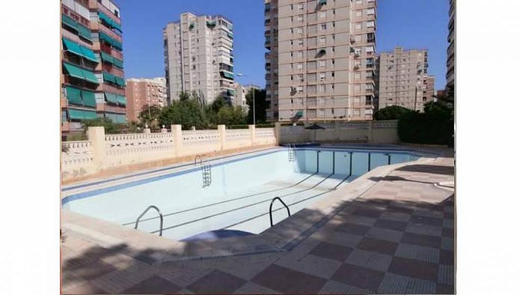Foto - Apartamento en venta en Albufereta en Alicante/Alacant - 233443897
