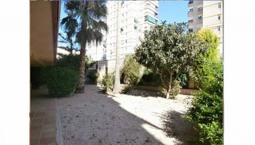 Foto - Apartamento en venta en Albufereta en Alicante/Alacant - 233443900