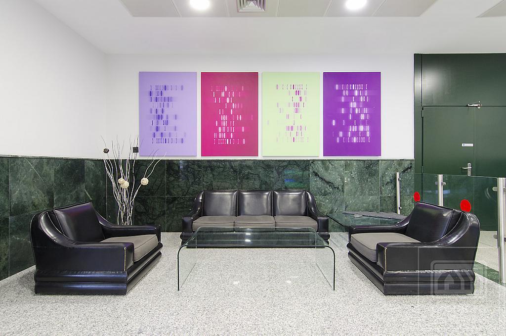 Oficina en alquiler en calle Teide, El Praderón-La Hoya en San Sebastián de los Reyes - 336225756