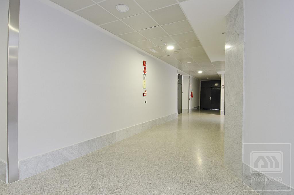 Oficina en alquiler en calle Teide, El Praderón-La Hoya en San Sebastián de los Reyes - 336225763