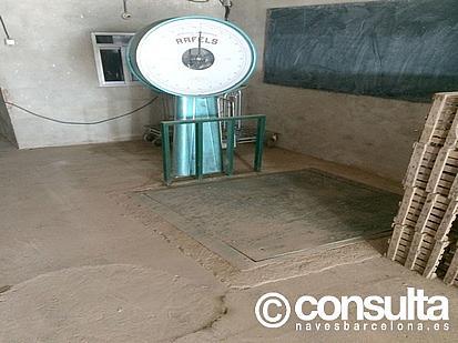 Detalles - Nave industrial en alquiler en polígono Sant Boi de Llobregat, Sant Boi de Llobregat - 248052954