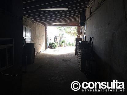 Planta baja - Nave industrial en alquiler en polígono Sant Boi de Llobregat, Sant Boi de Llobregat - 248052961