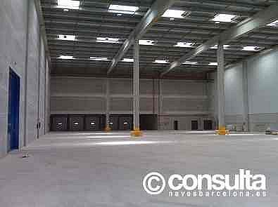 Planta baja - Nave industrial en alquiler en polígono Zal, Zona Franca- Port en Barcelona - 248311926